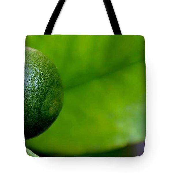 Gapefruit Tote Bag by Werner Lehmann