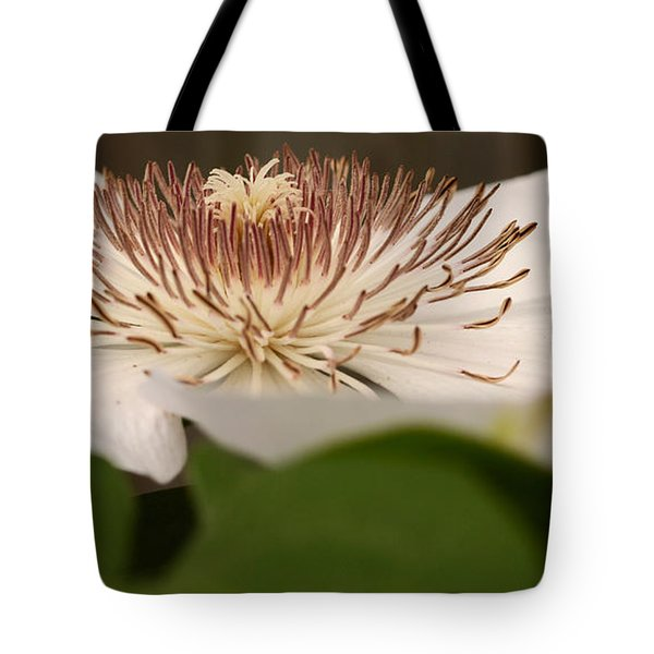 Garden Charmer Tote Bag by Wanda Brandon