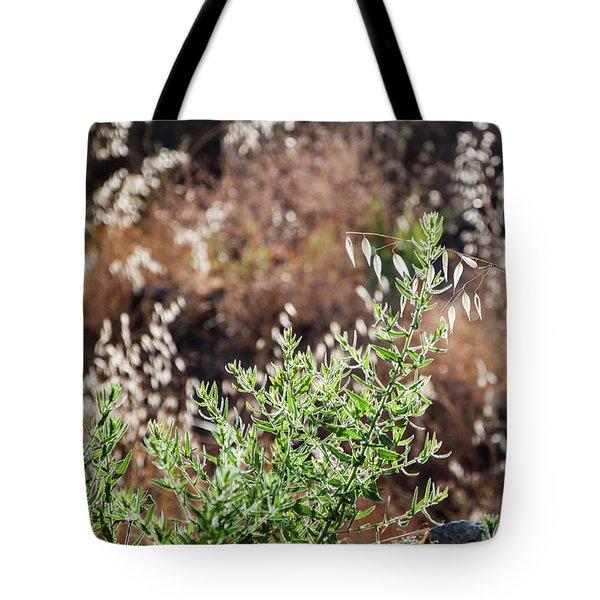 Garden Contre Jour 2 Tote Bag