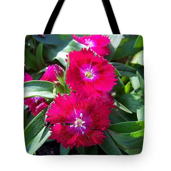 Tote Bag featuring the photograph Garden Delight by Sandi OReilly