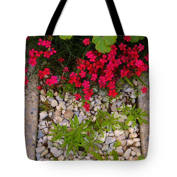 Garden Edge 2  Tote Bag by Lyle Crump