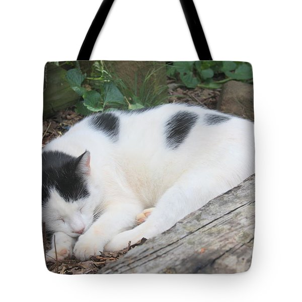 Garden Kitty 5 Tote Bag