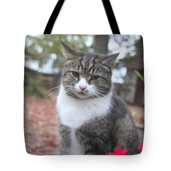 Garden Kitty 6 Tote Bag