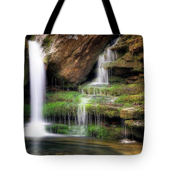 Garden Of Eden Tote Bag by Tamyra Ayles