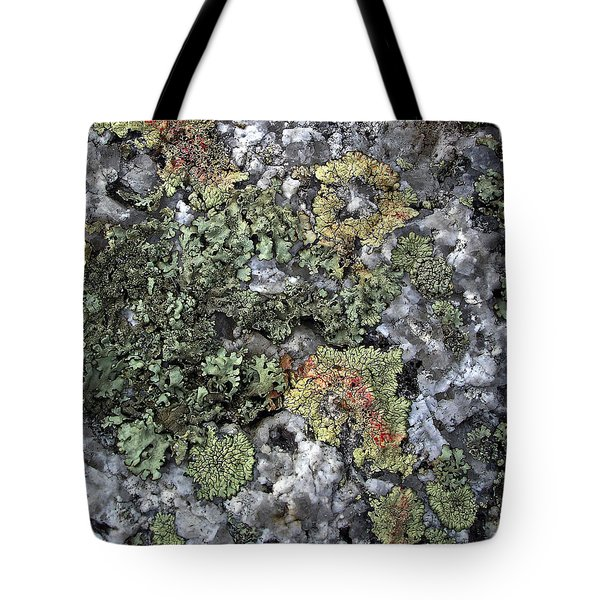 Tote Bag featuring the photograph Garden Of Lichen And Granite by Lynda Lehmann