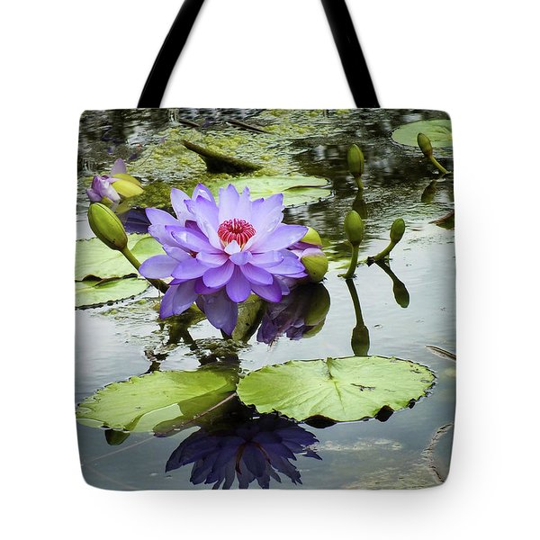 Garden Reflaections Tote Bag
