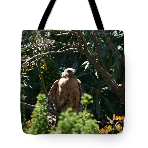 Tote Bag featuring the photograph Garden Rest by Cynthia Marcopulos