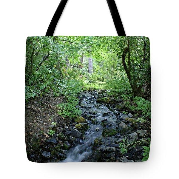 Tote Bag featuring the photograph Garden Springs Creek In Spokane by Ben Upham III