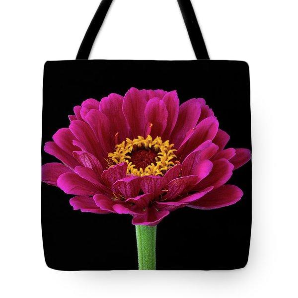 Garden Zinnia Tote Bag