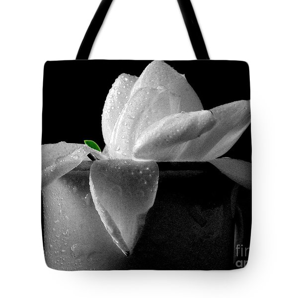 Gardenia In Coffee Cup Tote Bag
