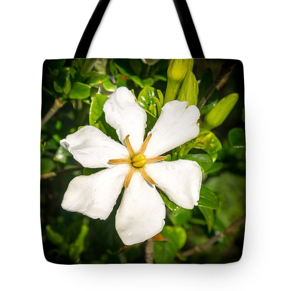 Gardenia In The Morning Sun Tote Bag