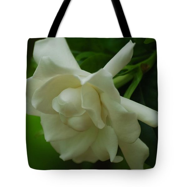 Tote Bag featuring the photograph Gardenia by Ramona Whiteaker