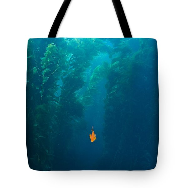 Garibaldi Fish In Giant Kelp Underwater Tote Bag by James Forte