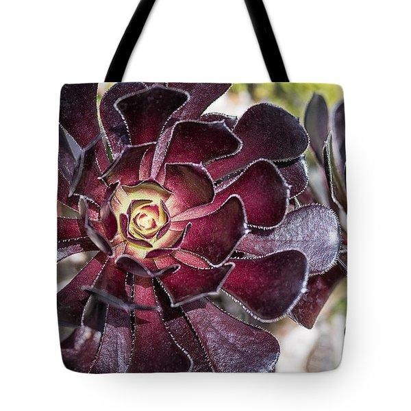 Garnet Cactus Tote Bag
