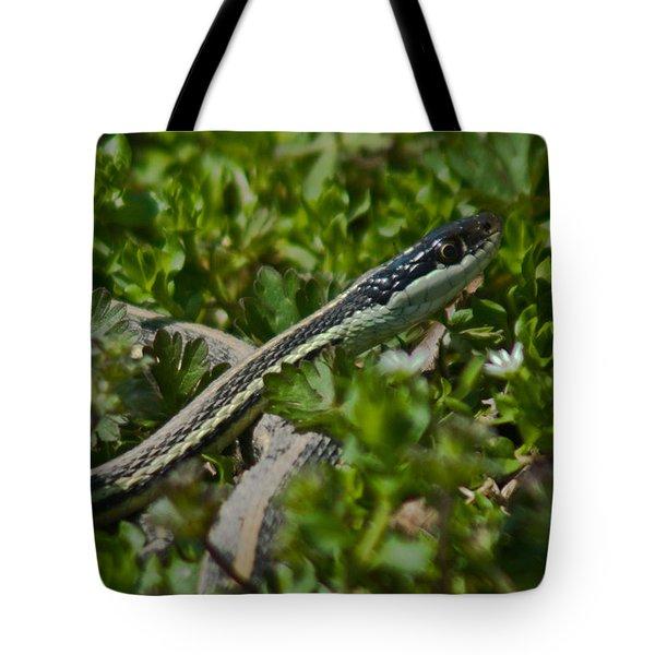 Garter Snake Tote Bag by Douglas Barnett