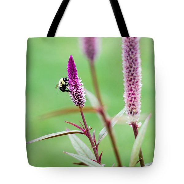 Gathering For The Family Tote Bag