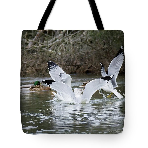 Gathering Of Egrets Tote Bag by George Randy Bass