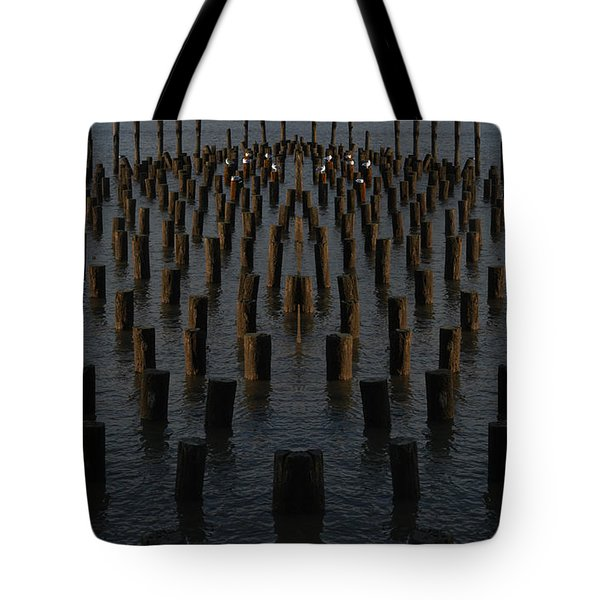 Gathering On The Hudson Tote Bag