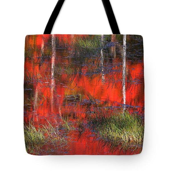 Gatineau Marsh Fall Colors Tote Bag