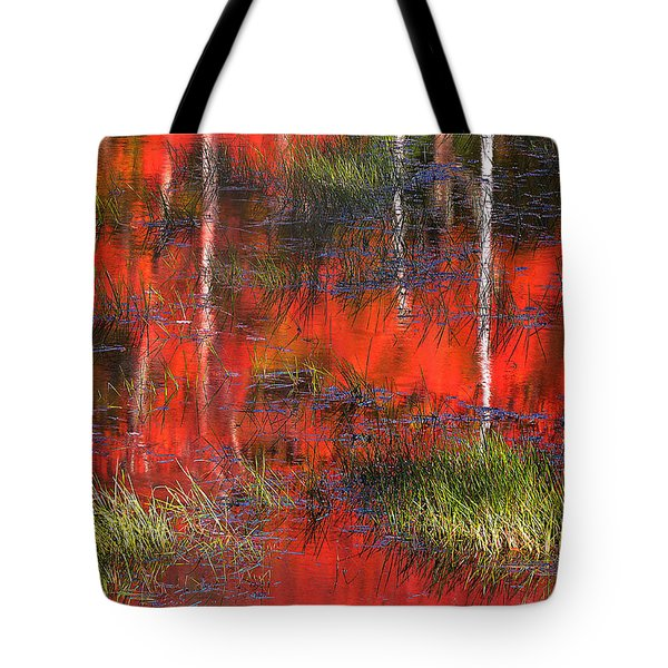 Gatineau Marsh Fall Colors Tote Bag