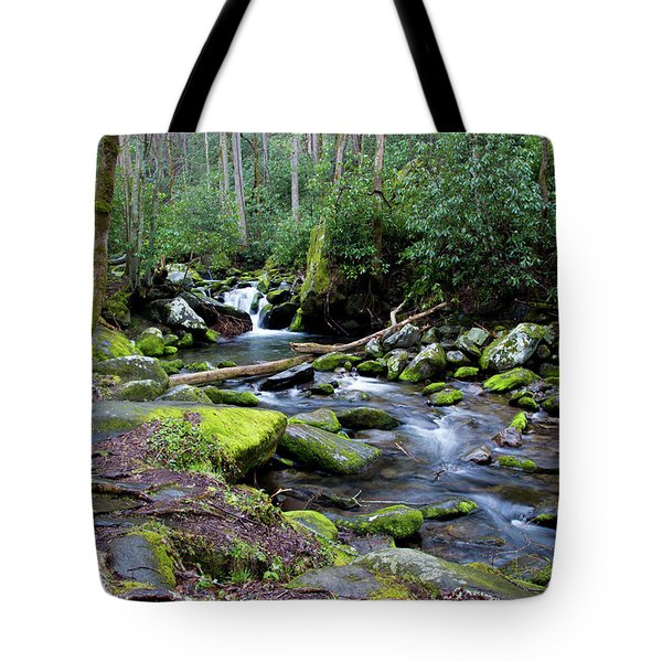 Gatlinburg Water Tote Bag