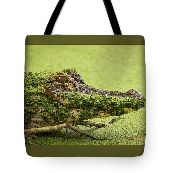 Gator Camo Tote Bag