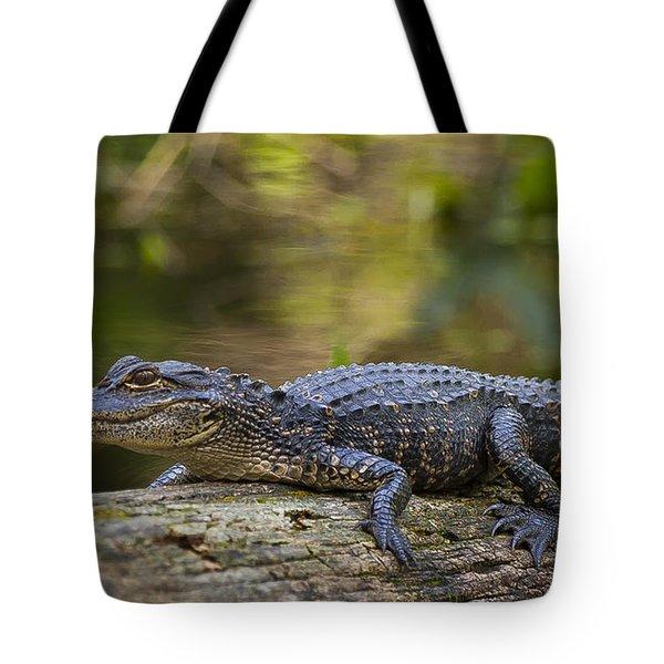 Gator Time Tote Bag