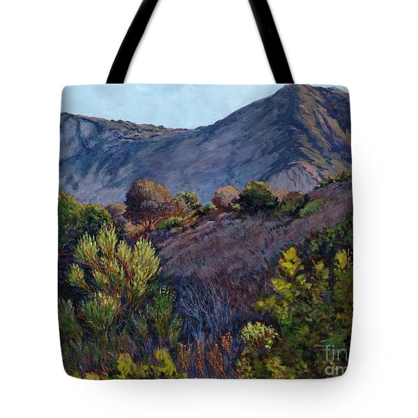 Gaviota Afternoon Tote Bag