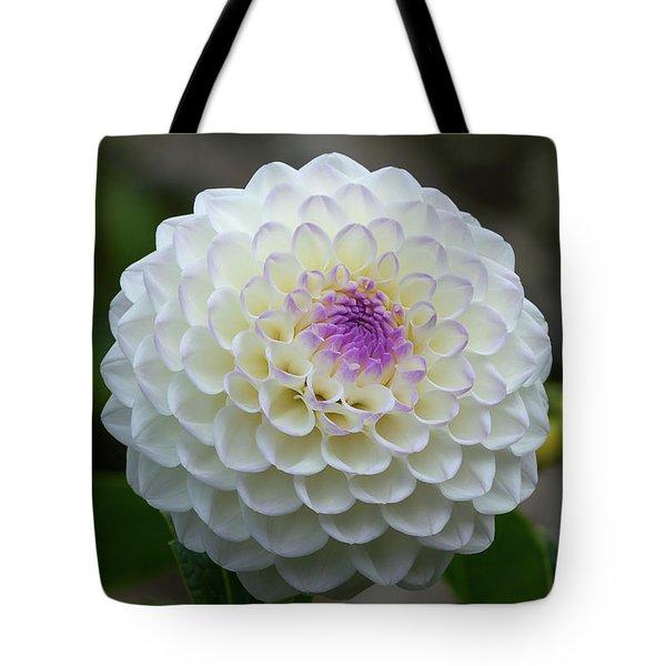 Gaylen Rose Dahlia 1 Tote Bag