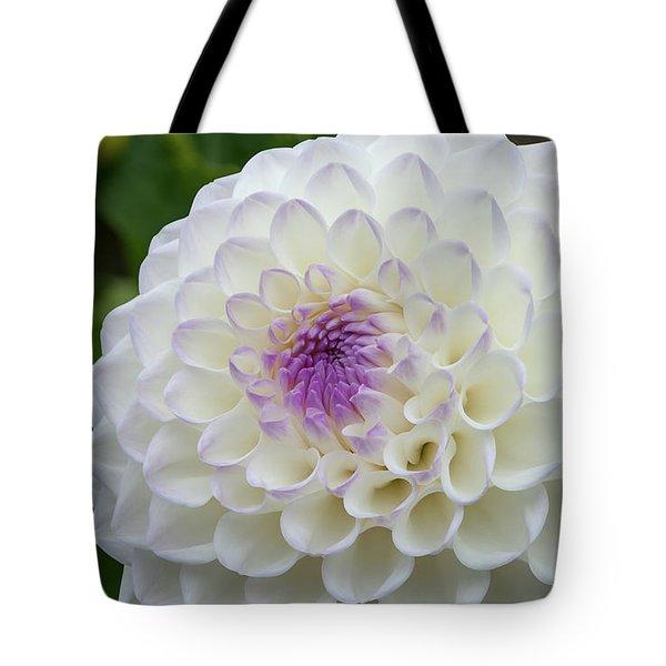 Gaylen Rose Dahlia 3 Tote Bag