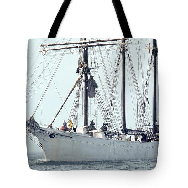 Tote Bag featuring the photograph Gazela Primiero by Richard Goldman