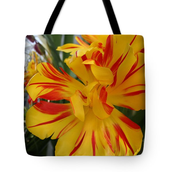 Tote Bag featuring the photograph Gazing Ball Reflections by Mary Lou Chmura