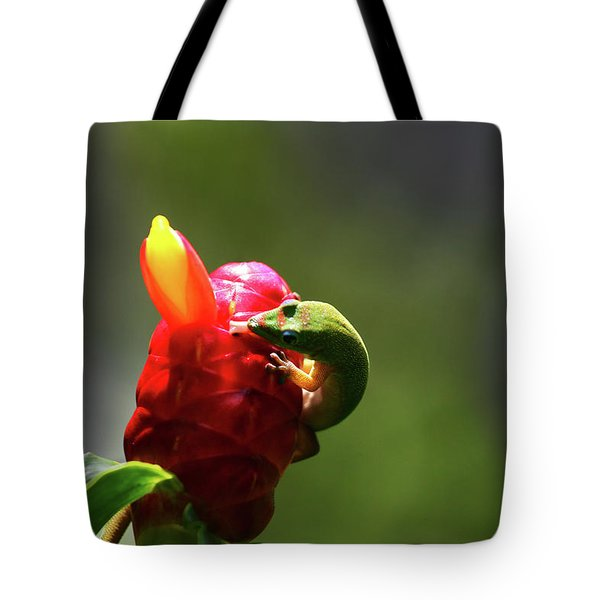 Tote Bag featuring the photograph Gecko #2 by Anthony Jones