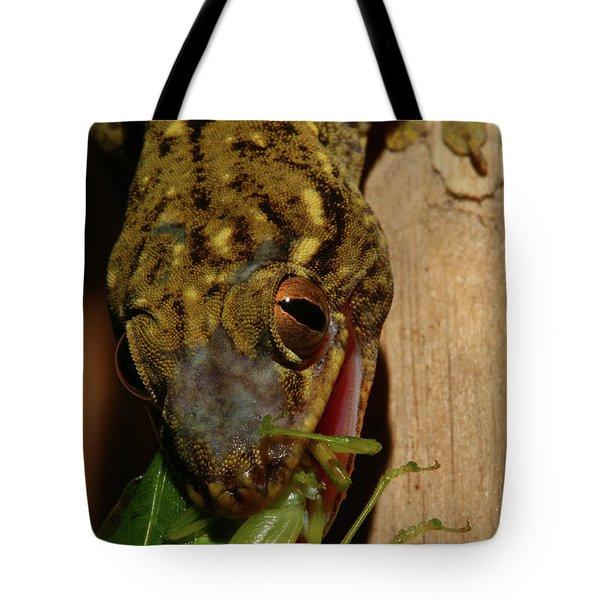 Gecko Feed Tote Bag