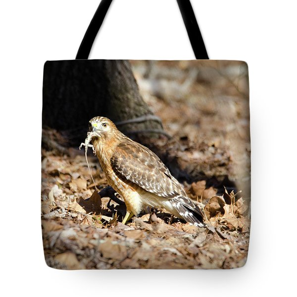 Gecko For Lunch Tote Bag by George Randy Bass