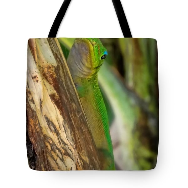 Gecko Up Close Tote Bag by Pamela Walton