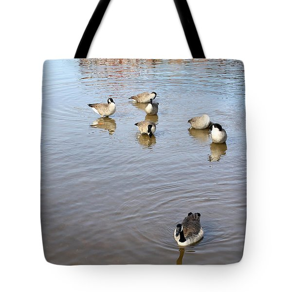 Geese At Sundown Tote Bag by Ellen Tully
