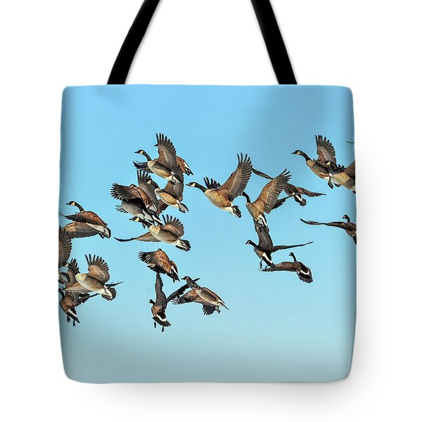 Geese In Flight Tote Bag