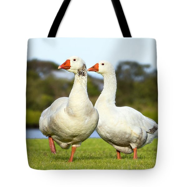 Tote Bag featuring the photograph Geese Walk In The Park 02 by Kevin Chippindall