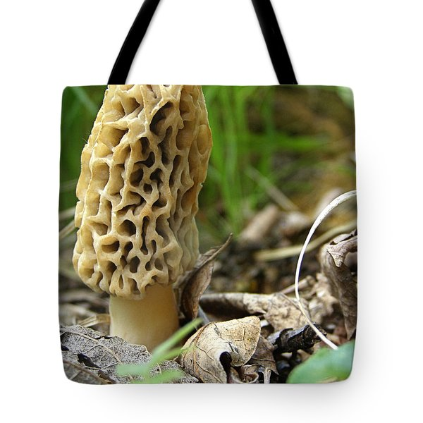 Tote Bag featuring the photograph Gem Of The Forest - Morel Mushroom by Angie Rea
