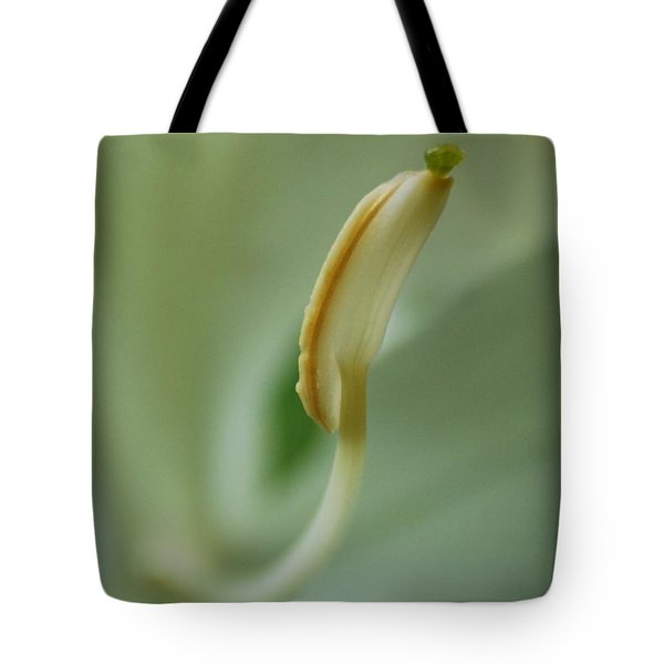 Tote Bag featuring the photograph Gems On Top by Ramona Whiteaker