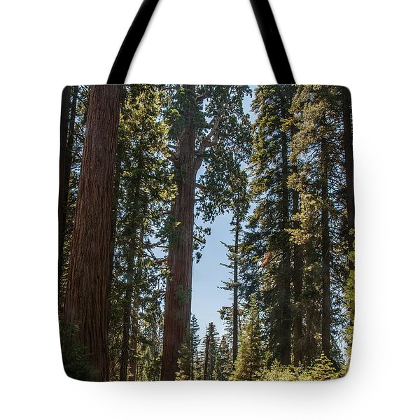 General Grant Tree Kings Canyon National Park Tote Bag