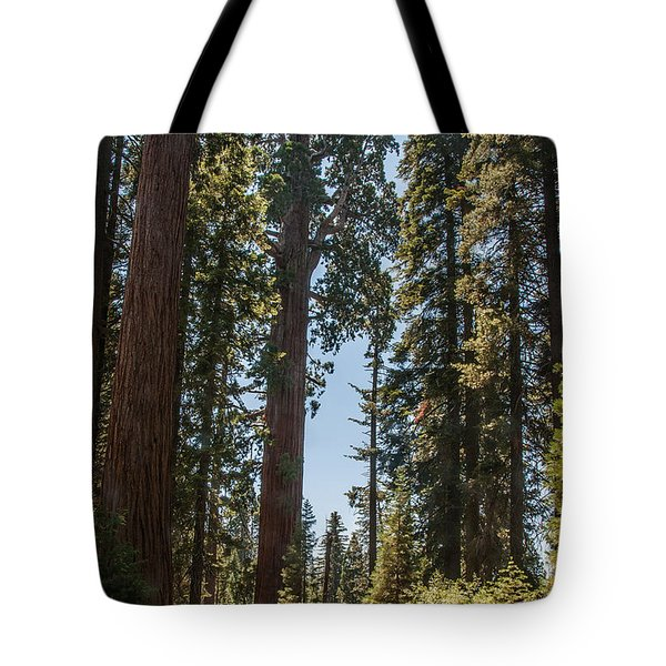 General Grant Tree Kings Canyon National Park Tote Bag