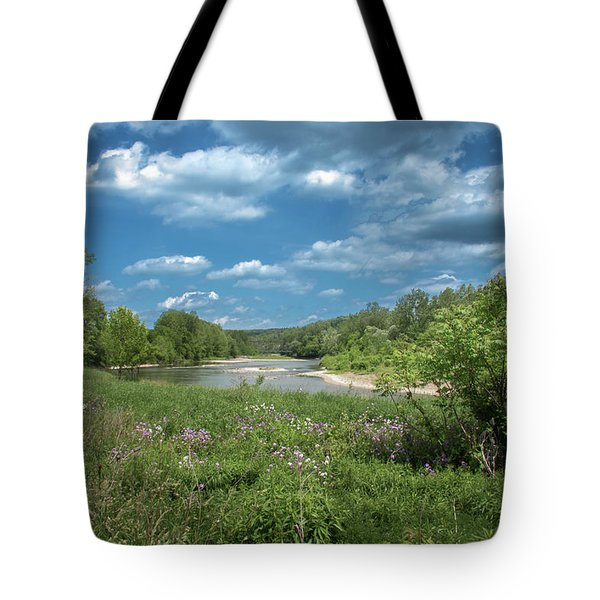 Tote Bag featuring the photograph Genesee River by Guy Whiteley