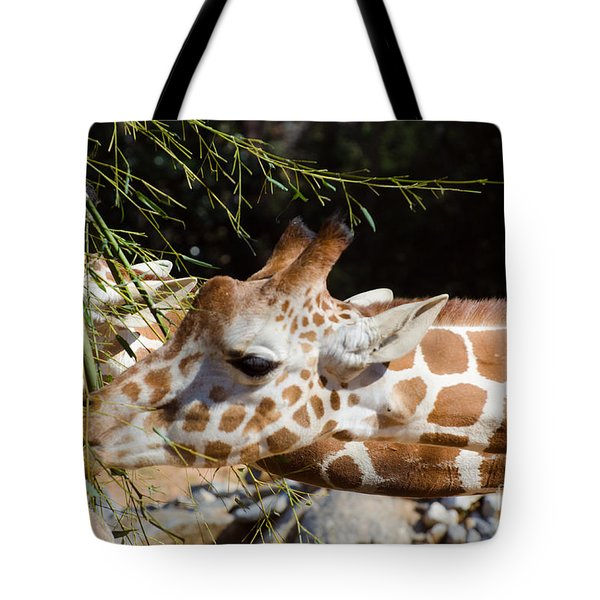 Gentle Beauty Tote Bag by Donna Brown