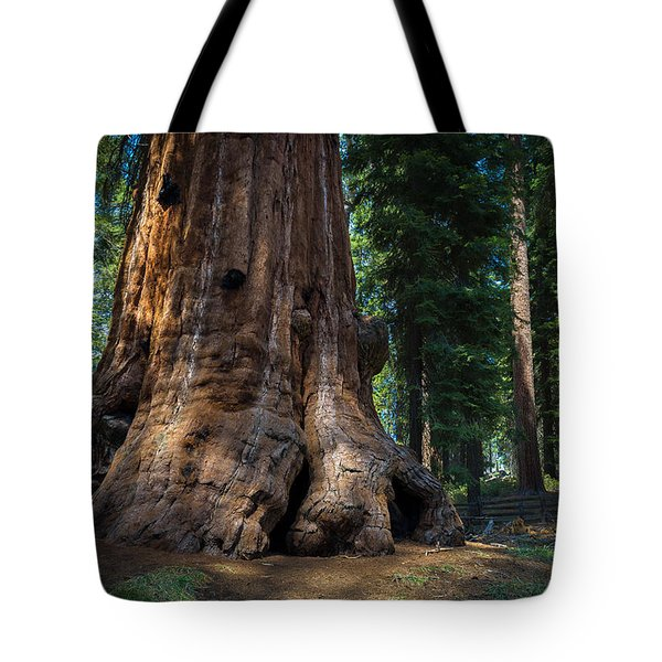 Tote Bag featuring the photograph Gentle Giant by Laura Roberts