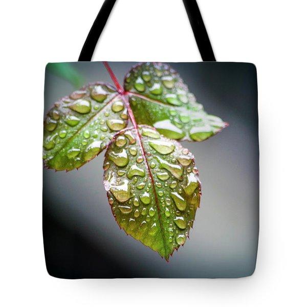 Gentle Rain Drops Tote Bag