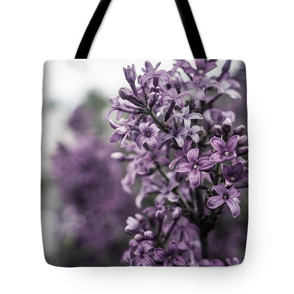 Gentle Spring Breeze Tote Bag