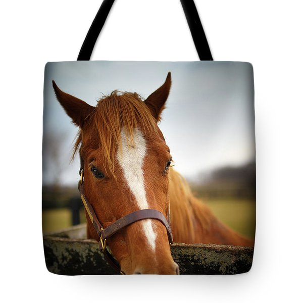Tote Bag featuring the photograph Genuine Reward by Shane Holsclaw