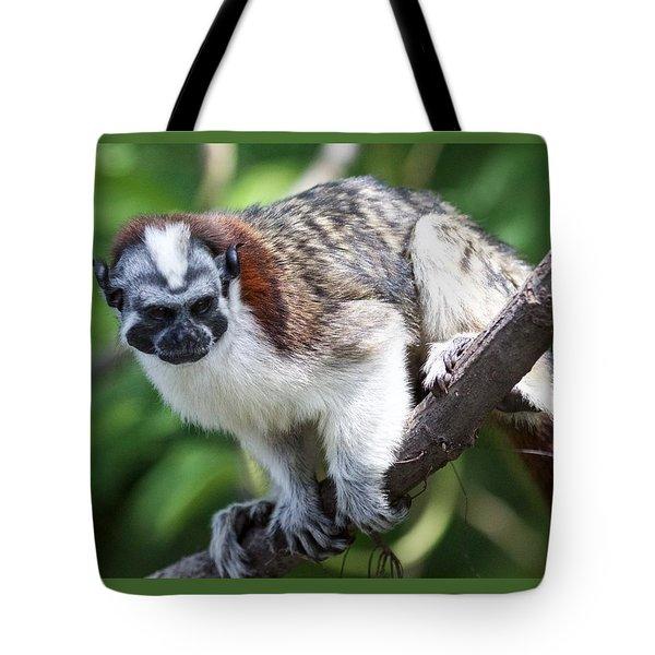 Geoffroy's Tamarin Saguinus Geoffroyi Tote Bag